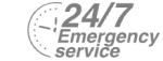 24/7 Emergency Service Pest Control in Northolt, UB5. Call Now! 020 8166 9746
