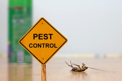 Pest Contol in Northolt, UB5. Call Now 020 8166 9746